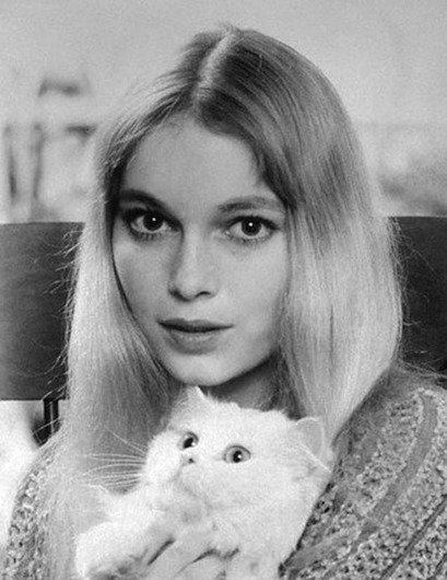 mia farrow cat